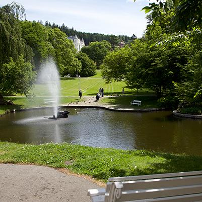 Marienska Lazne park