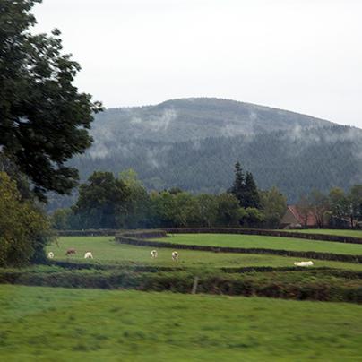 Bibracte hill