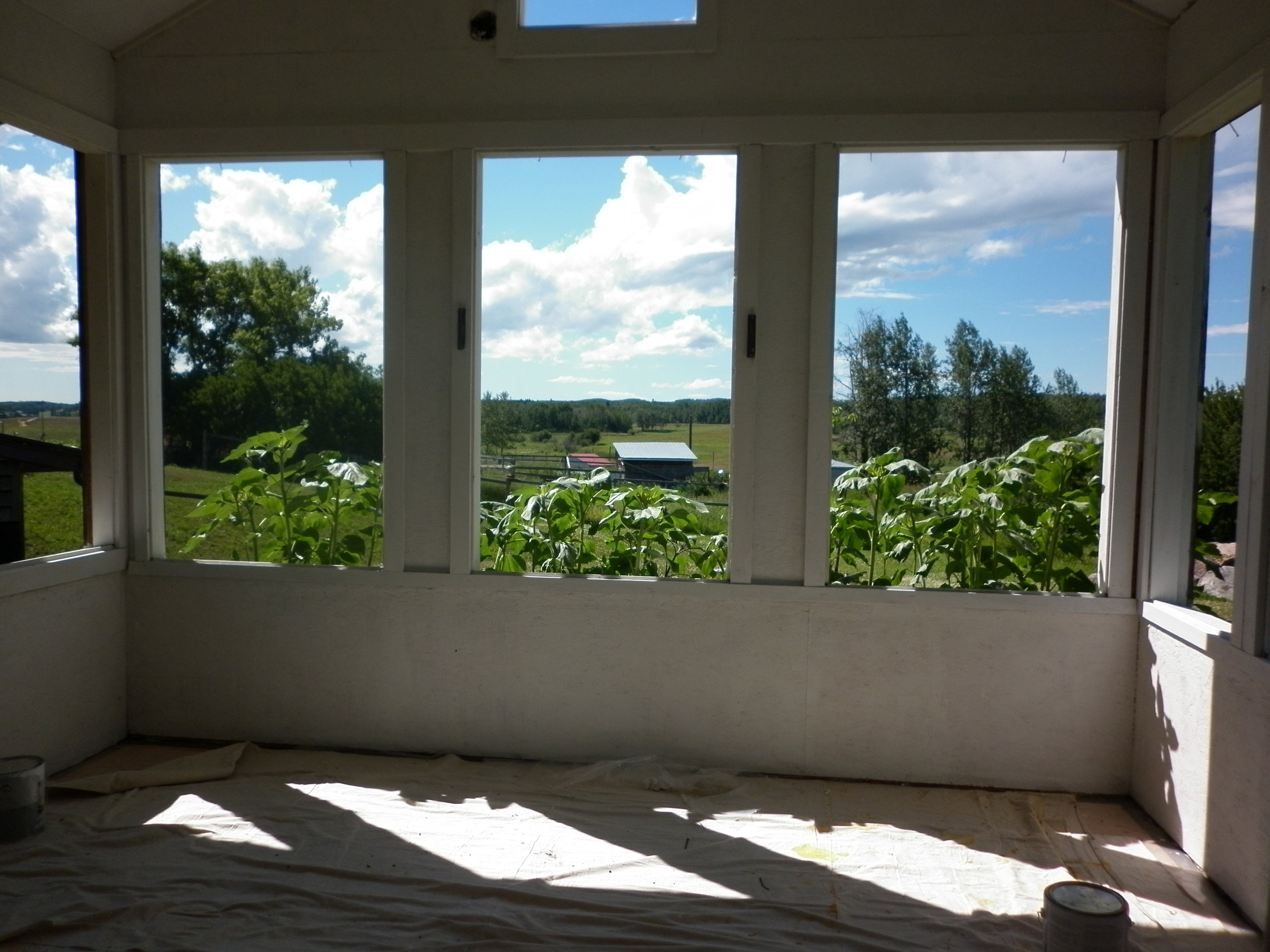 Here is a picture of the view from the Croft while we were in the process of transforming it from a greenhouse to a cabin.