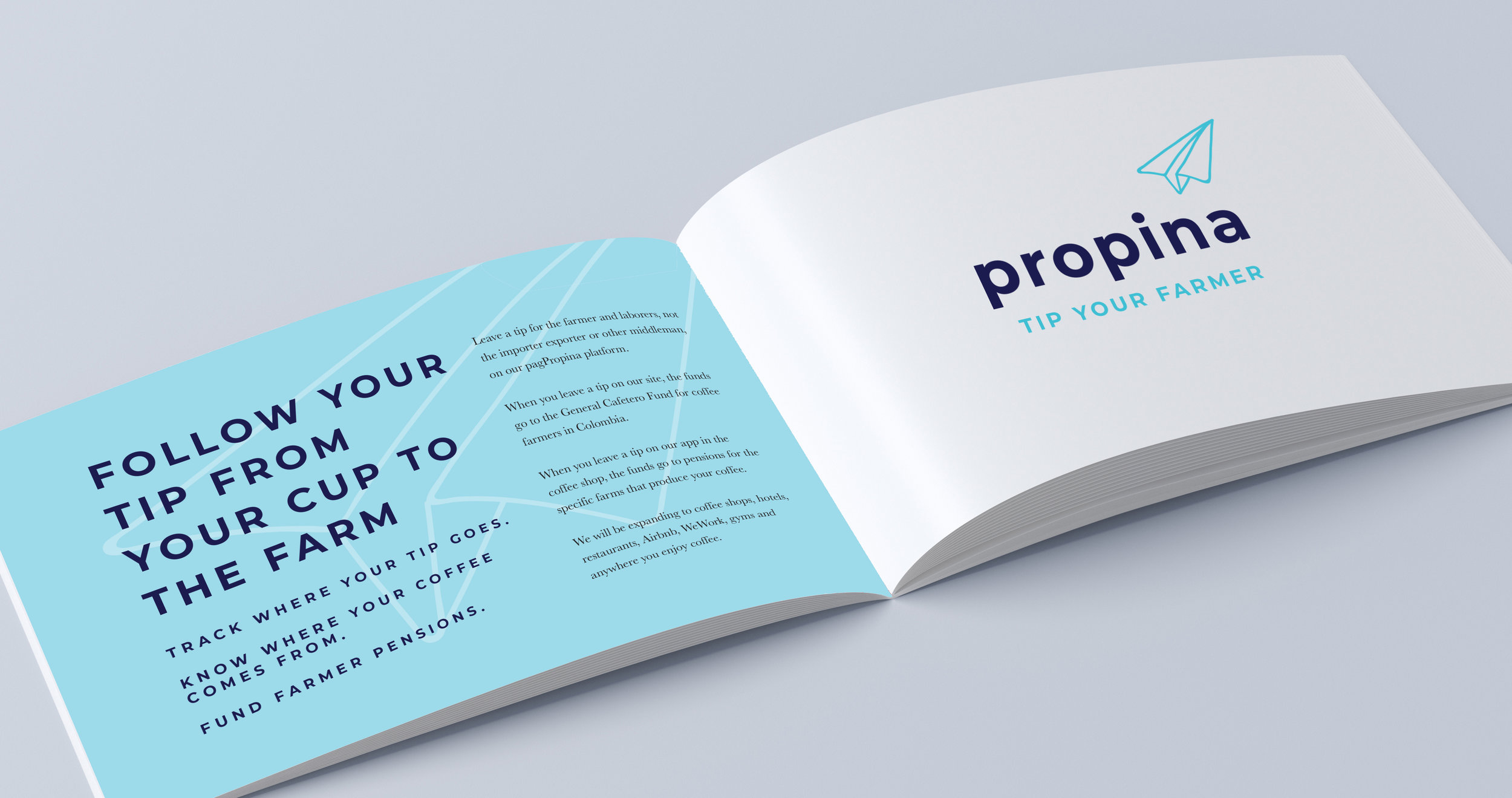 PROPINA-PRESENTATION.jpg