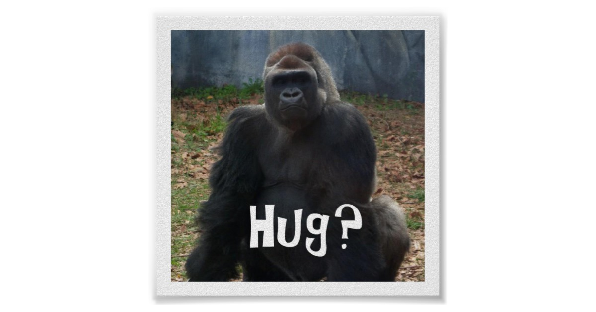gorilla hug.jpg