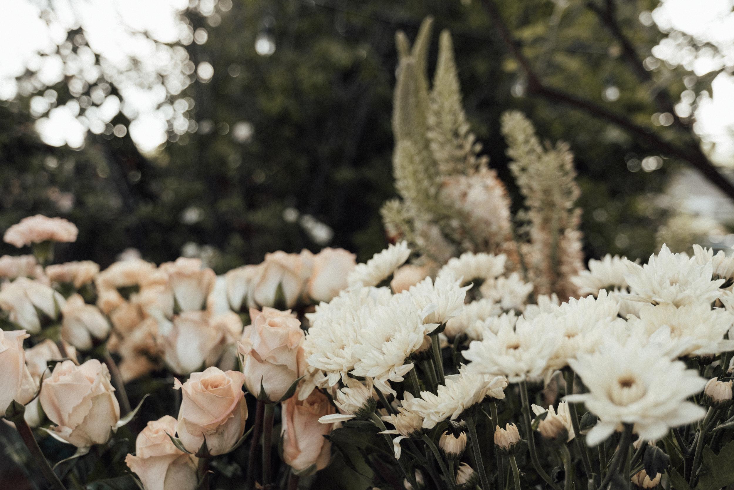 wildflowerandco-3.jpg