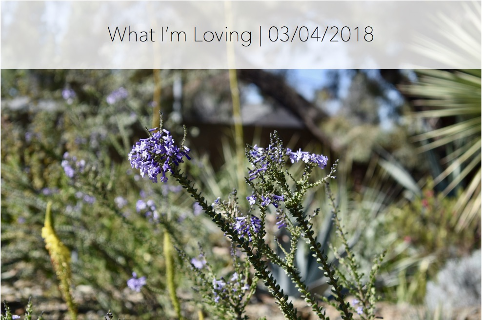 WhatImLoving-3.4.18