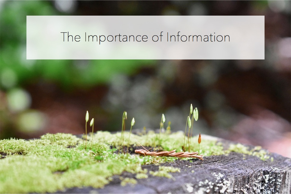importanceofinfo