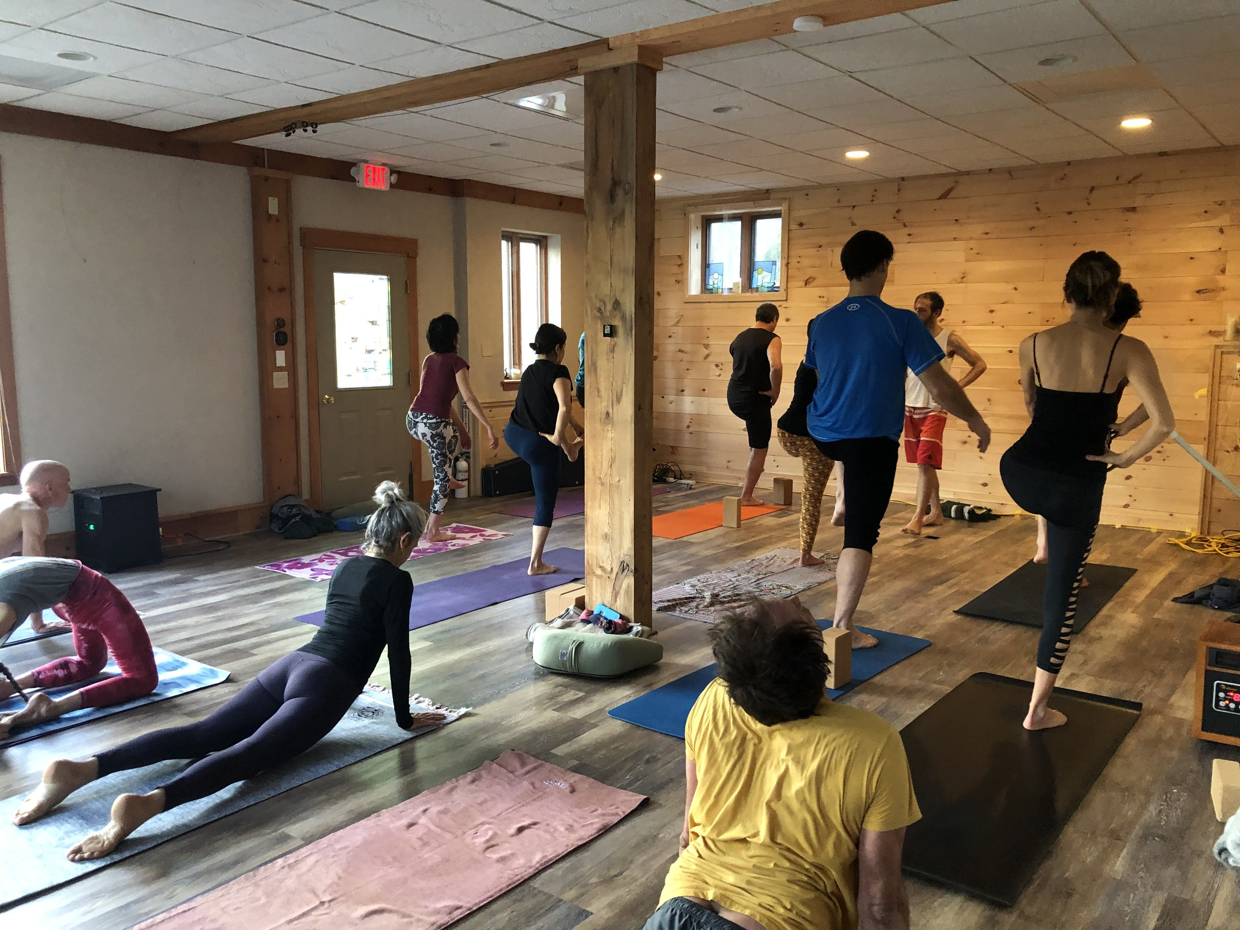 Intro to Yoga Therapy