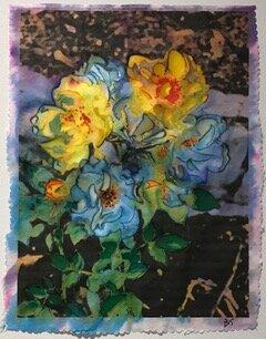 Rose Series by Brett Linda Stapleton