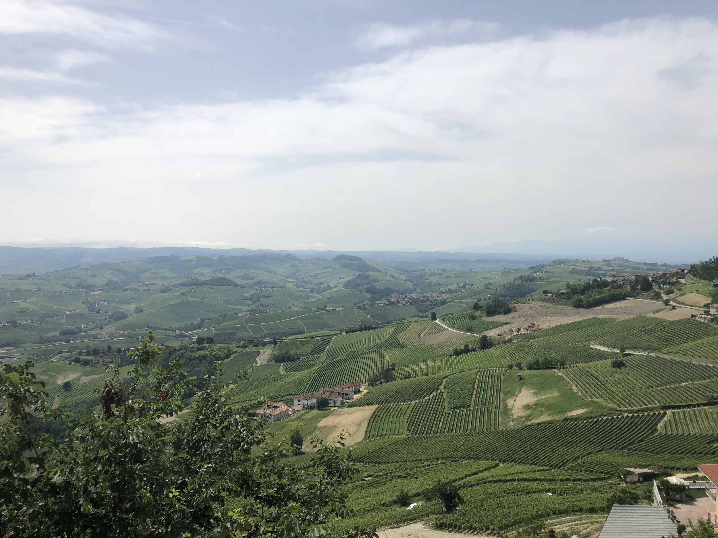 On our full day there, we took a road trip through the surrounding towns. Our first stop was Barolo, know for its wine. Dan was determined to find some wines to ship home so we were in the right region. Barolo is a small town, so it didn't take us too long to stroll through.