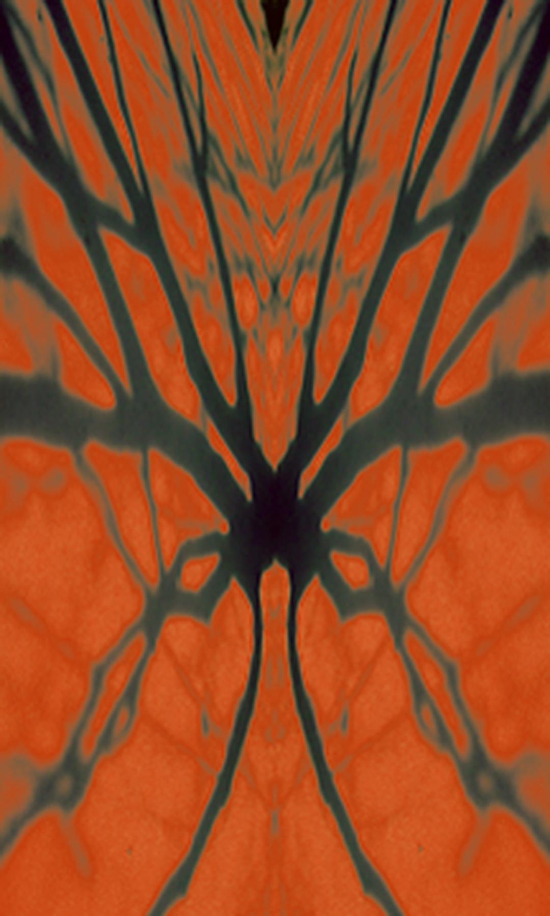 Rorschack Shadow Trilogy: Web, 2003, Screen print, 21.5 x 35.75 inches.