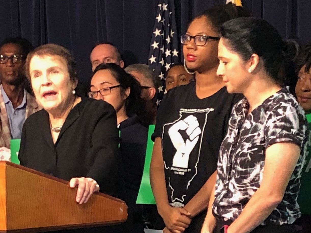 "Gov. Rauner ""cannot tolerate when working people come together and stand together in order to say they deserve a decent standard of living."" - AFSCME Local 31 Executive Director Roberta Lynch (One Illinois/Ted Cox)"