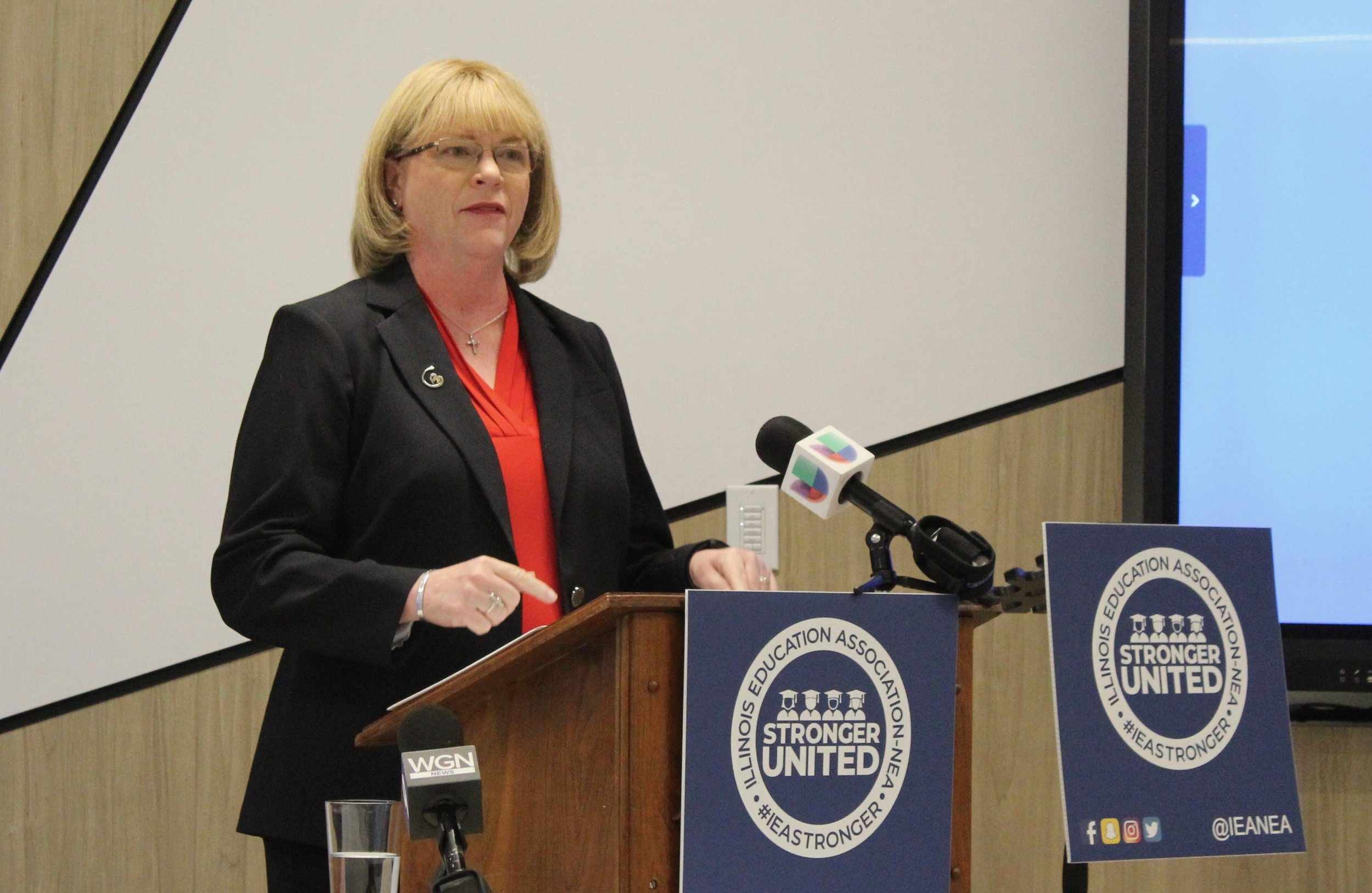 "IEA President Kathi Griffin touts the findings of a statewide poll showing overwhelming support for public education, saying, ""The people have spoken, and I hope our lawmakers are listening."" (One Illinois/Ted Cox)"
