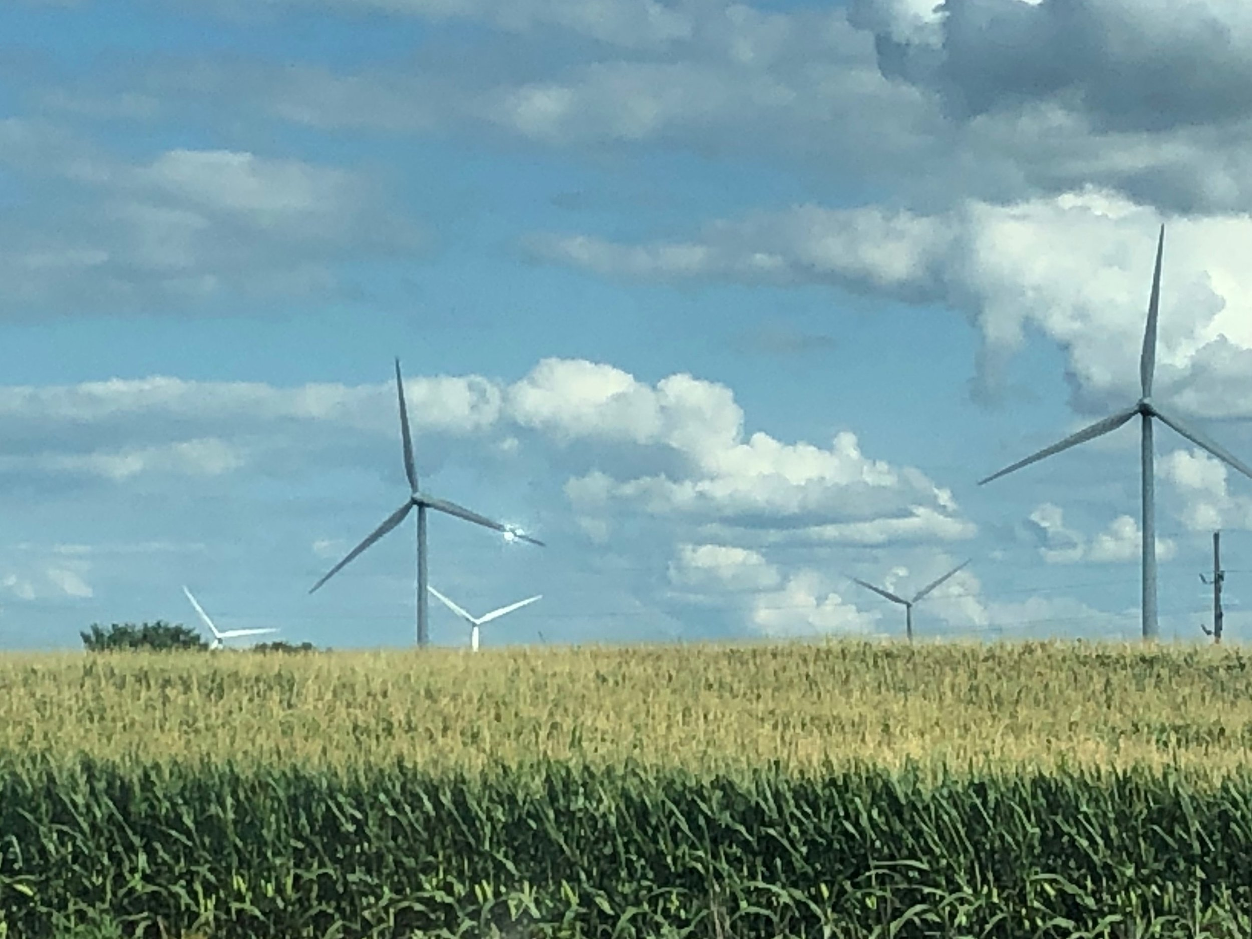 Wind farm meets farm: energy turbines rise above an Illinois cornfield. (One Illinois/Ted Cox)