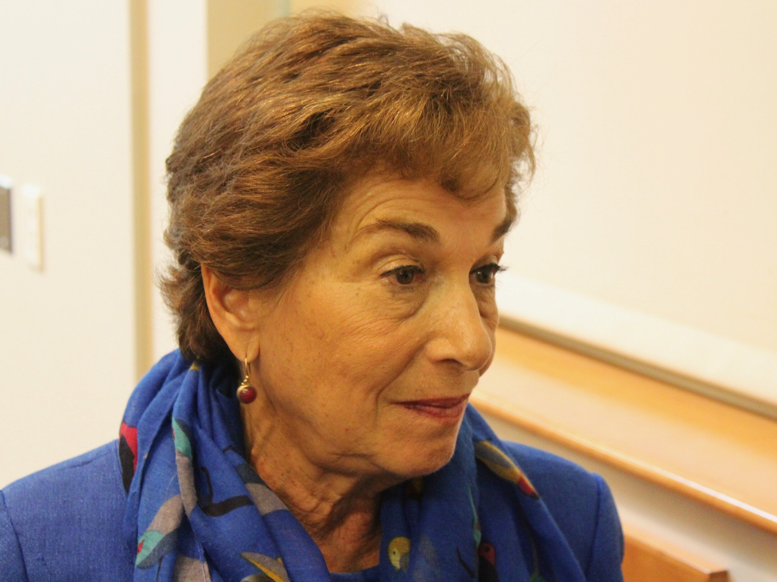 "U.S. Rep. Jan Schakowsky called Republican threats that the government would shut down during impeachment ""another betrayal of ordinary Americans."" (One Illinois/Ted Cox)"