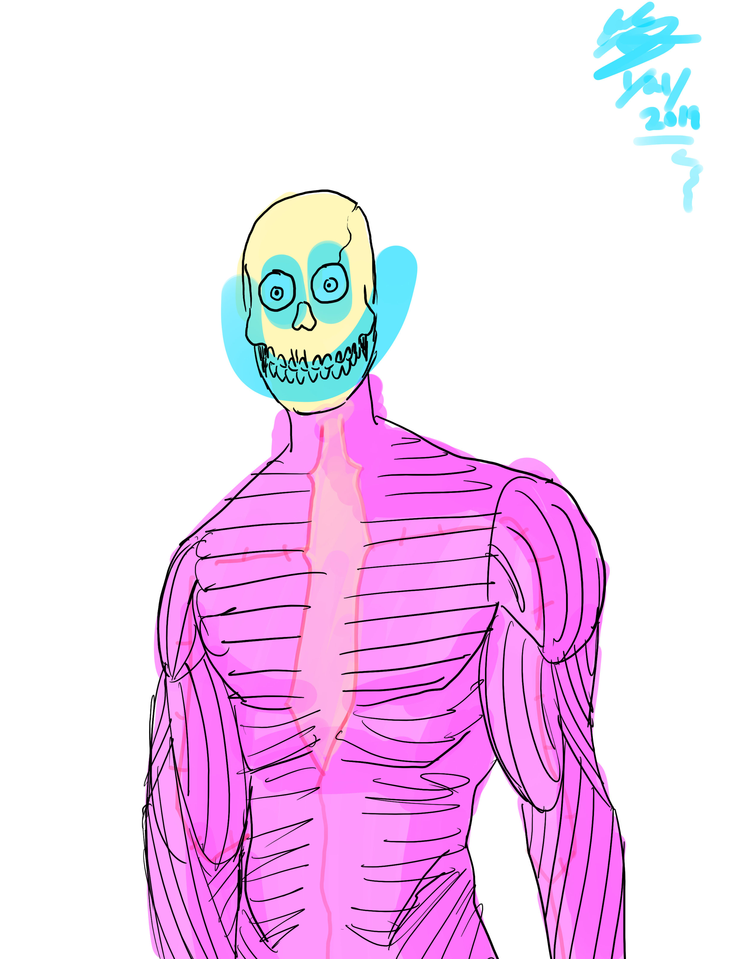 skeleton muscle man.jpg