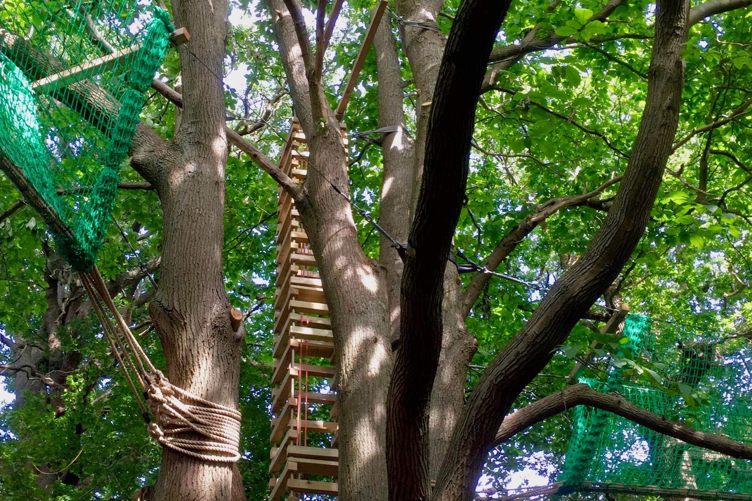 Joining two tree-tops walkways with a Rope Ladder