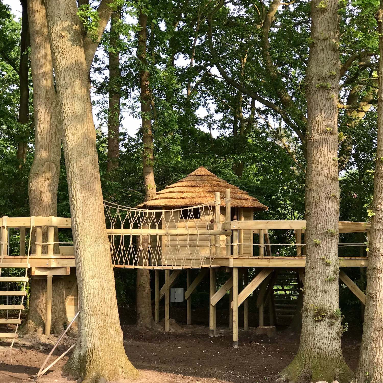 """""""...rope ladder, tree deck, rope bridge, treehouse and suppers deck"""""""