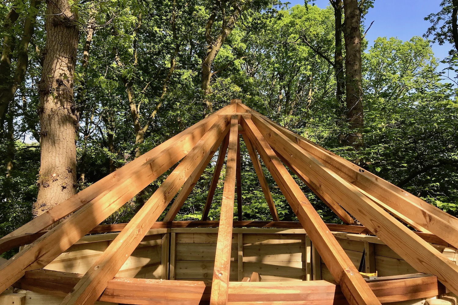 """""""...treehouse roof joists on circular ring beam"""""""