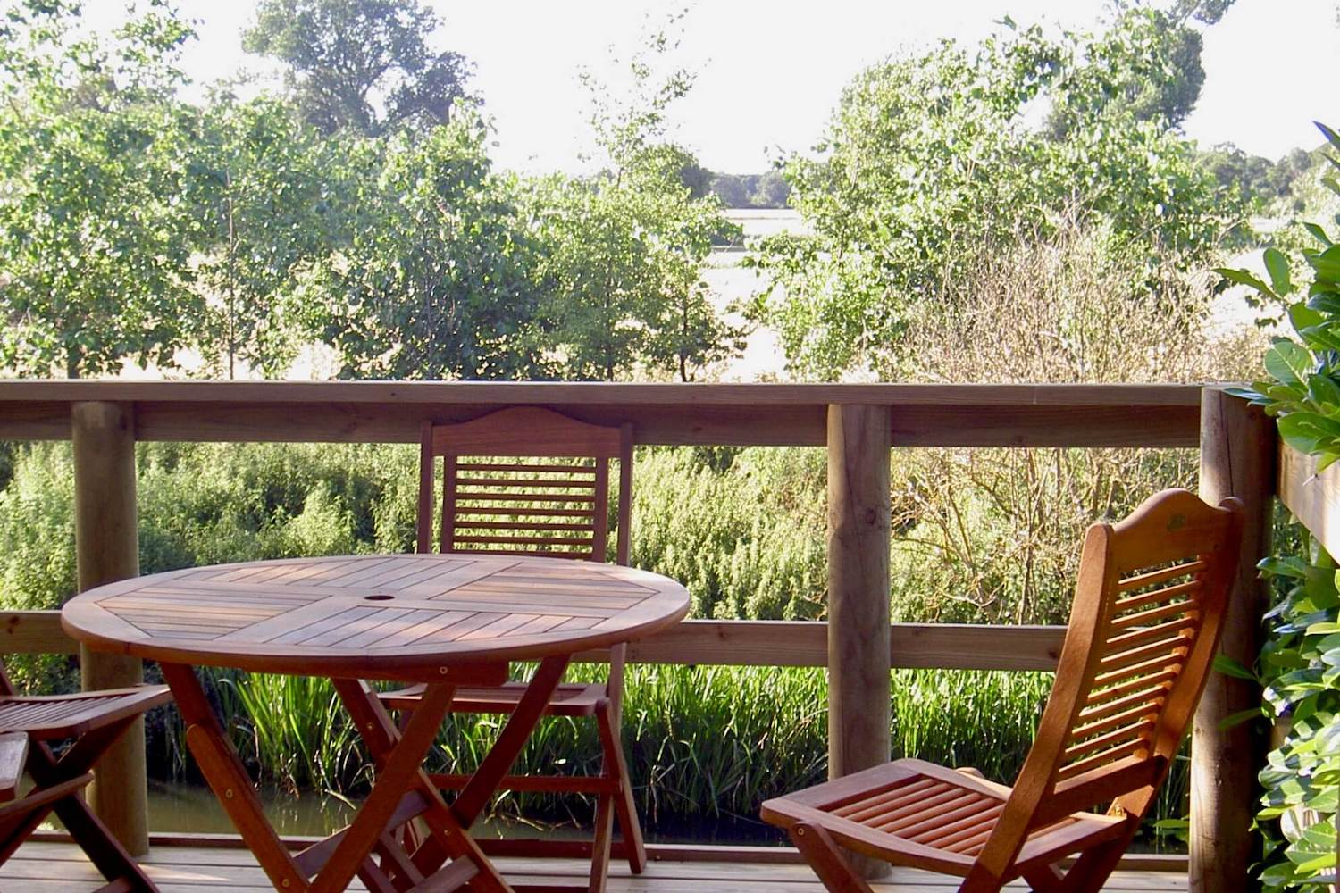 """""""...treehouse suppers-deck"""""""