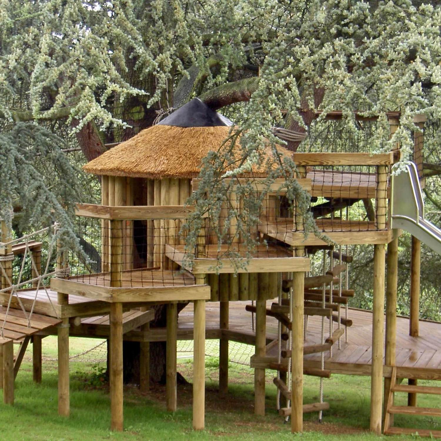 """...decks and platforms wrap treehouse"""