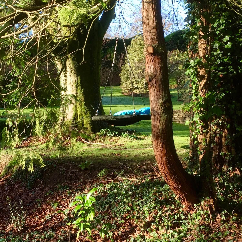 Relaxing Nest Swing in woodland setting.jpeg