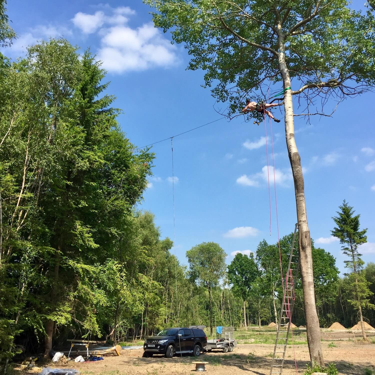 Installing a high line between trees for a Nest Swing.jpeg