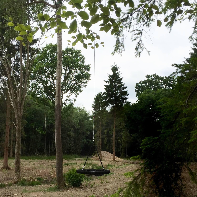 Suspended Nest Swing on long pendulum.jpeg