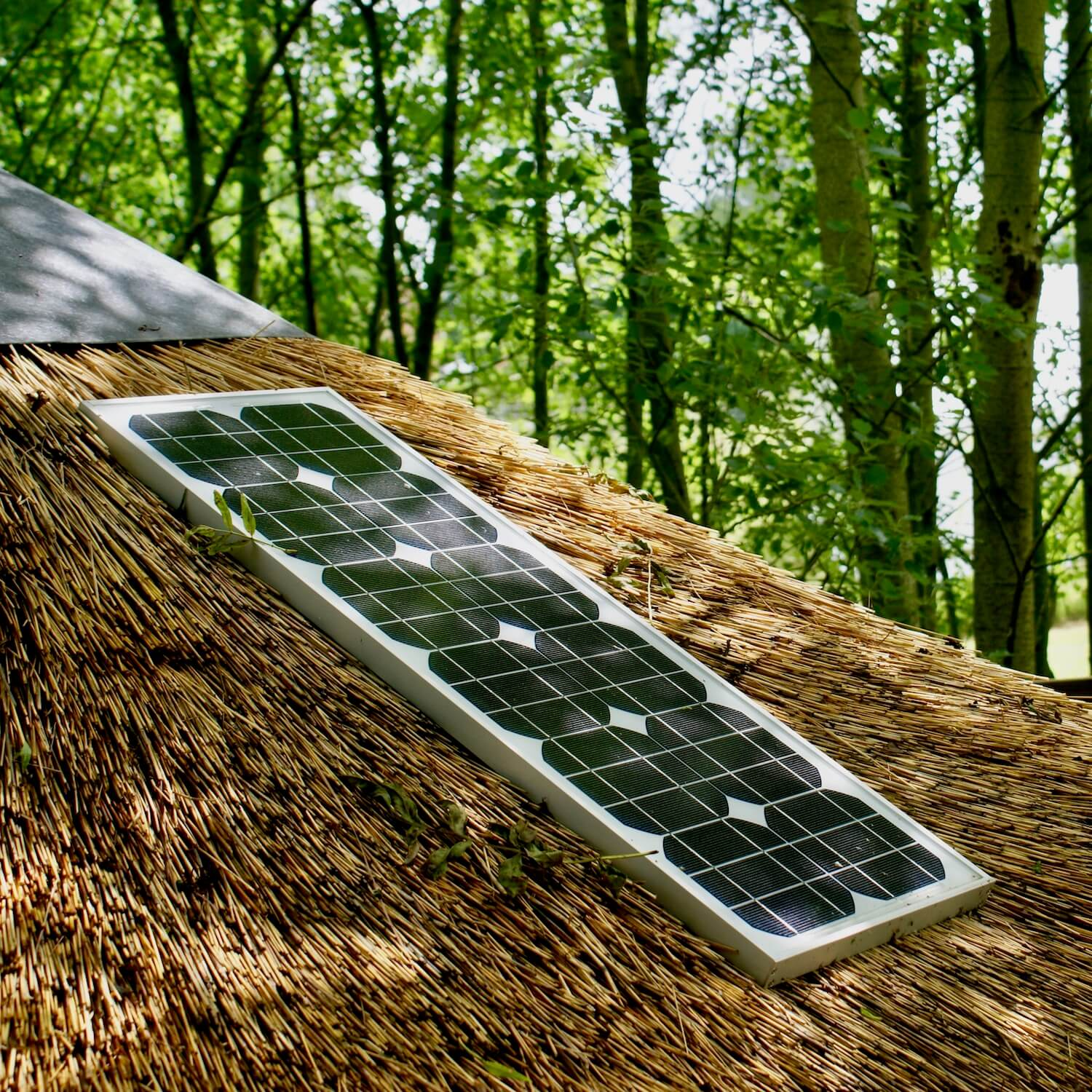 """""""...solar panel on treehouse roof"""""""
