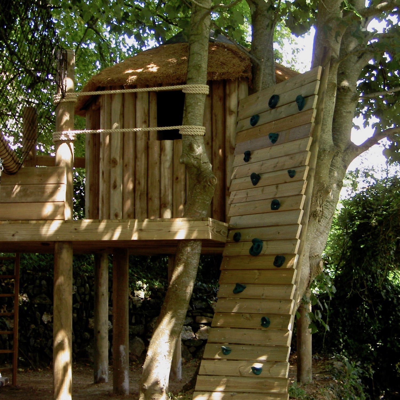 """""""...bespoke climbing wall wrapping a tree"""""""
