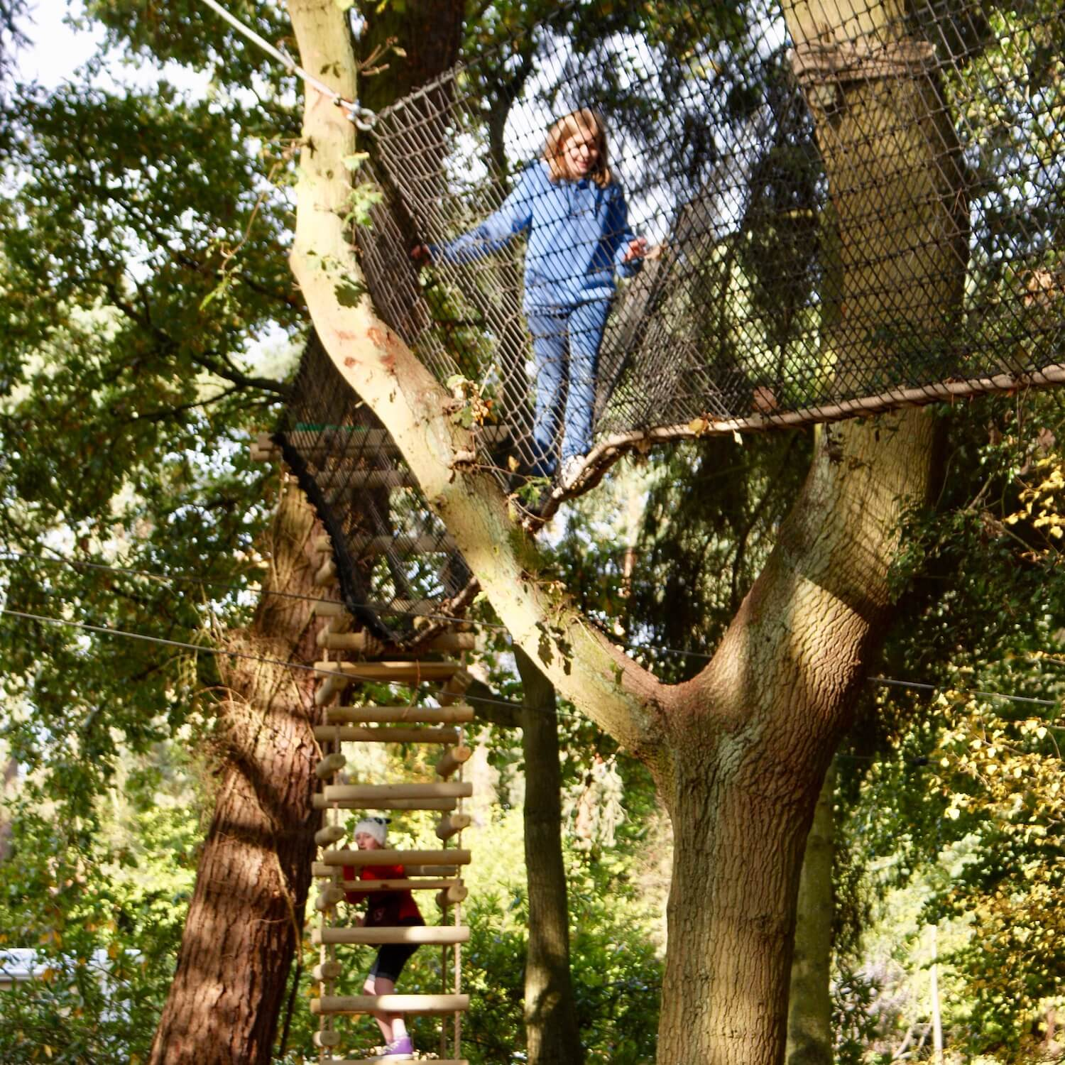 """""""...4-sided rope ladder leading to a treetop walkway"""""""