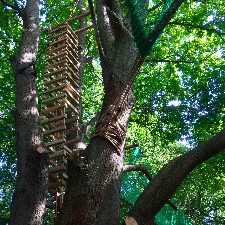 """...large 4-sided rope ladder amongst trees"""