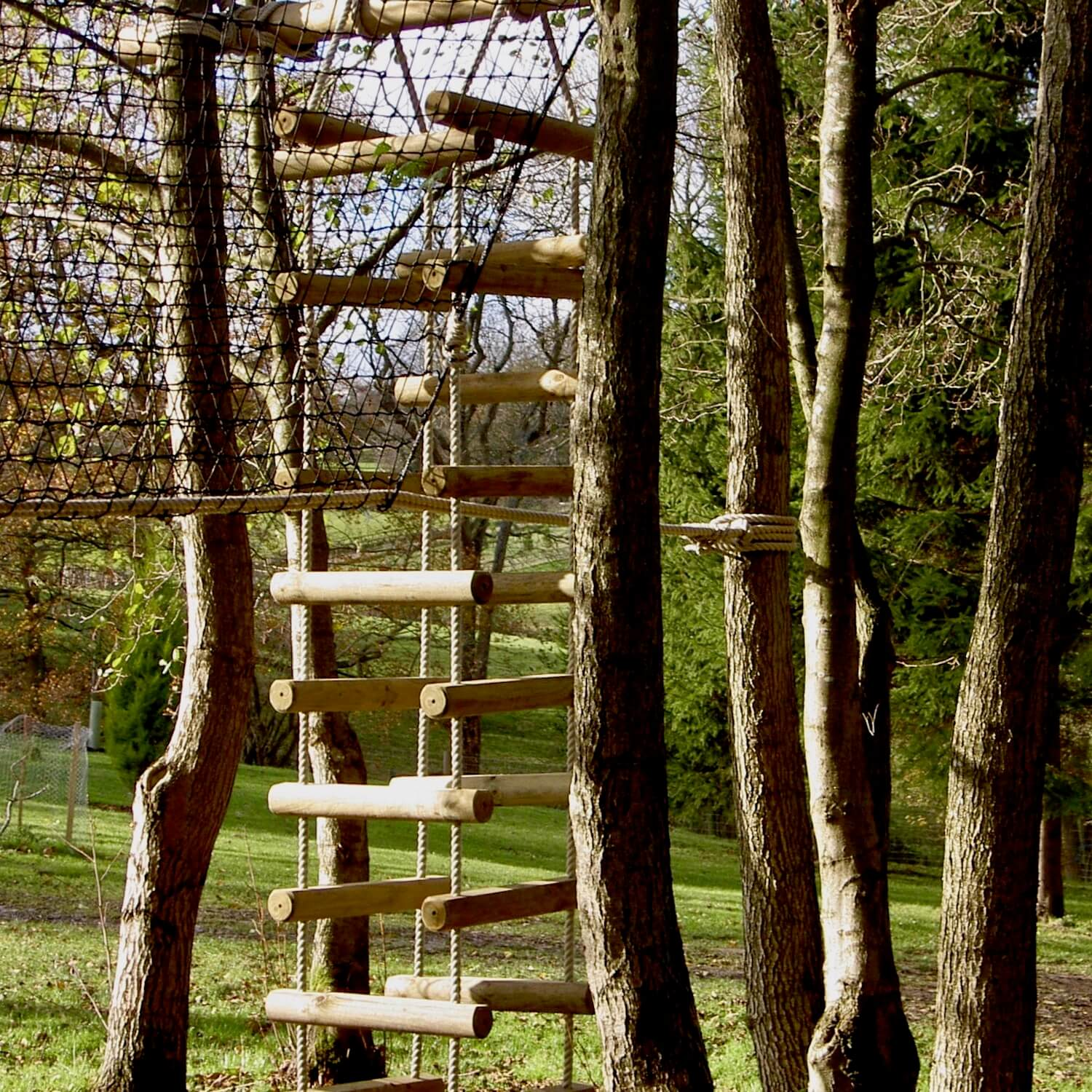 """""""...rope ladder as an exit to a treetop walkway"""""""