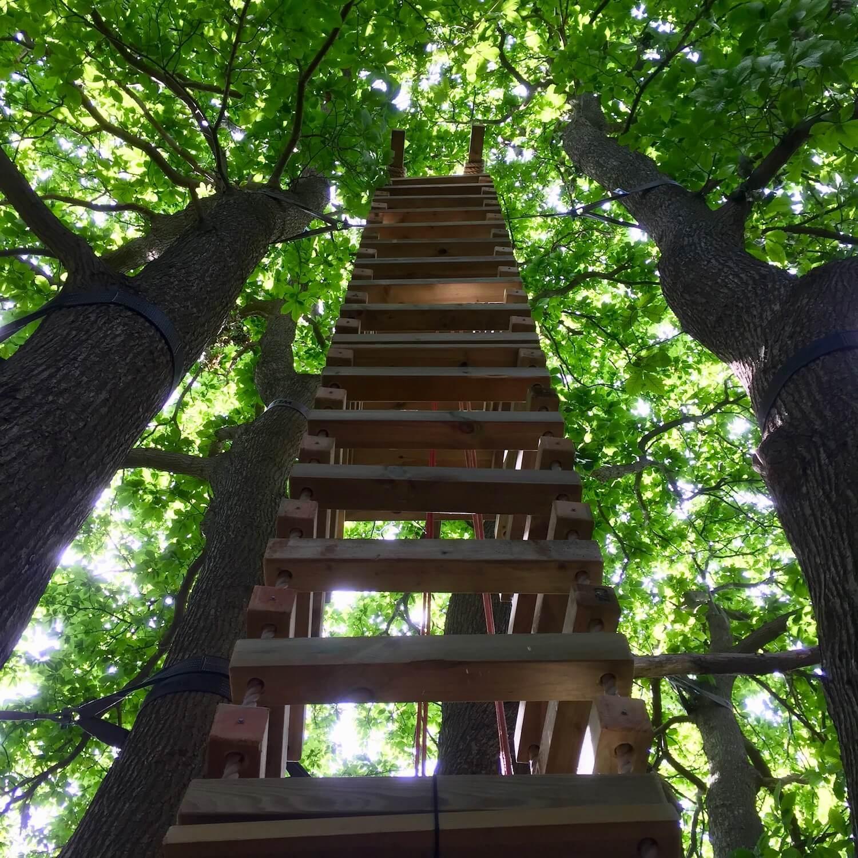 """...big suspended 4-sided rope ladder"""