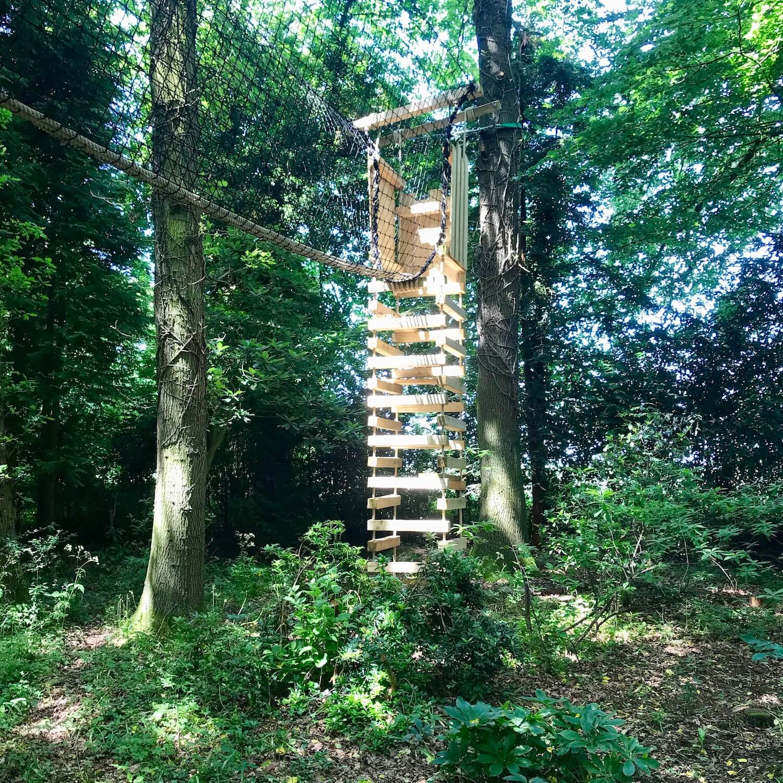 """...rope ladder and treetop hammock walkway"""