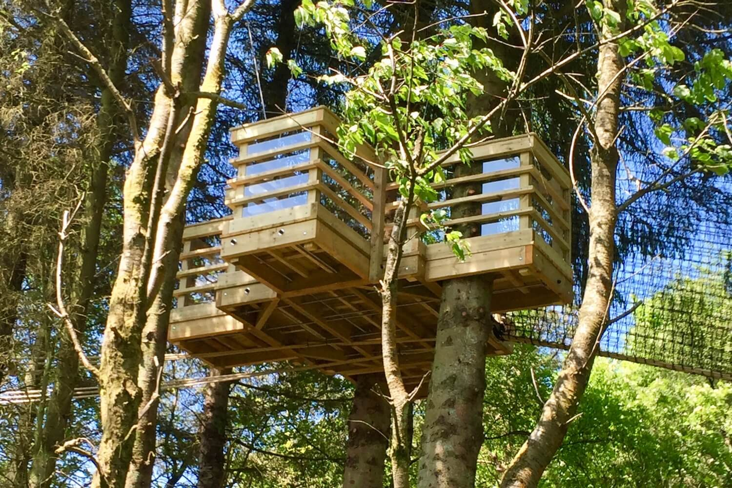 'Tree-Surfing' treehouse