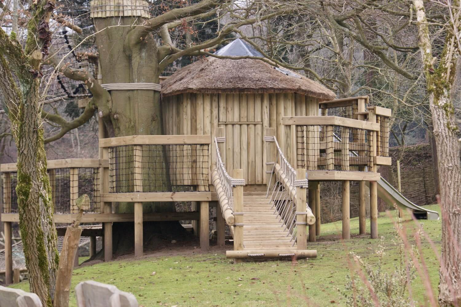 'Fun' tree houses