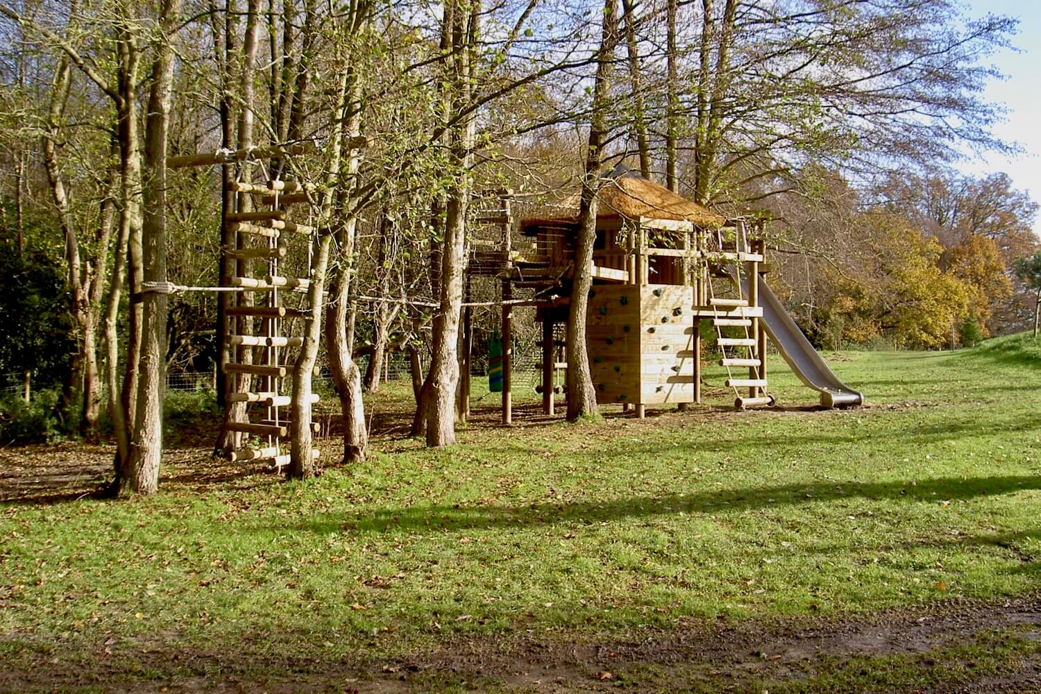 'School' tree house