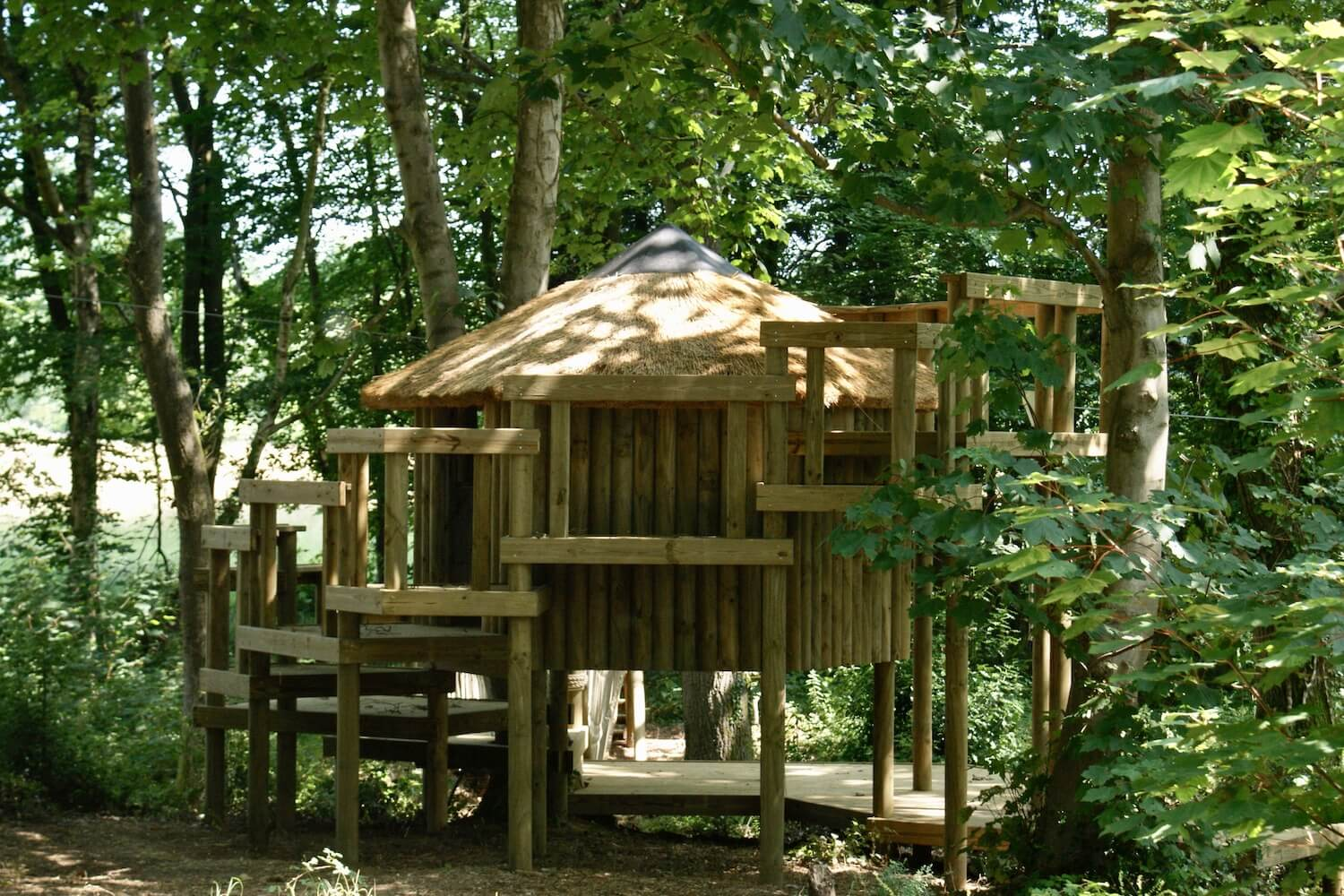 'Self-build' tree house