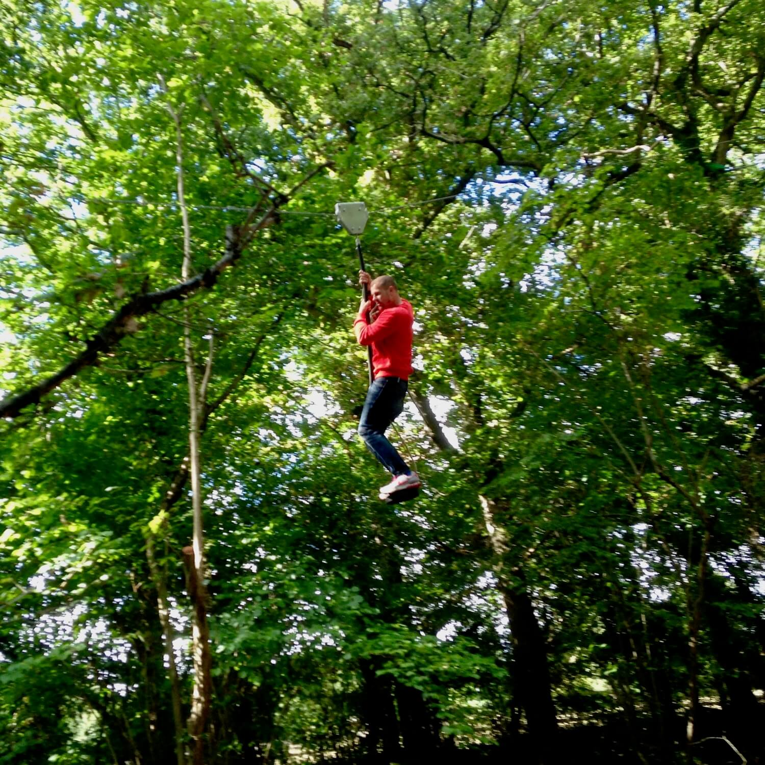 """""""...whizzing through the trees on a zip line"""""""