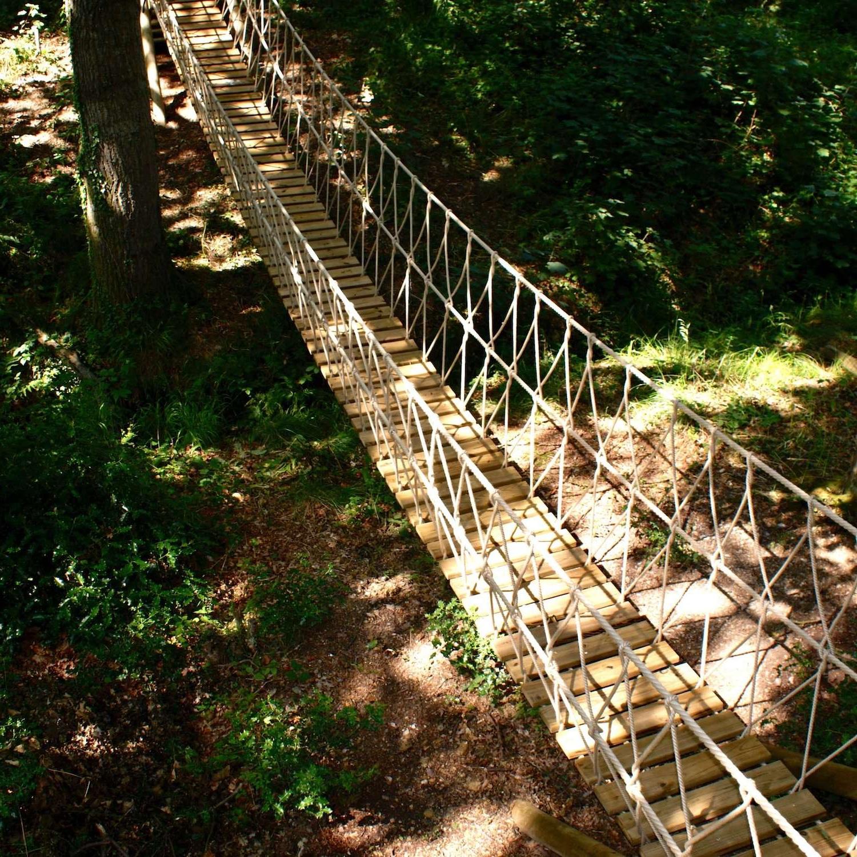 Treehouse-Life-Ltd-suspended-woodland-Rope-Bridge.jpg