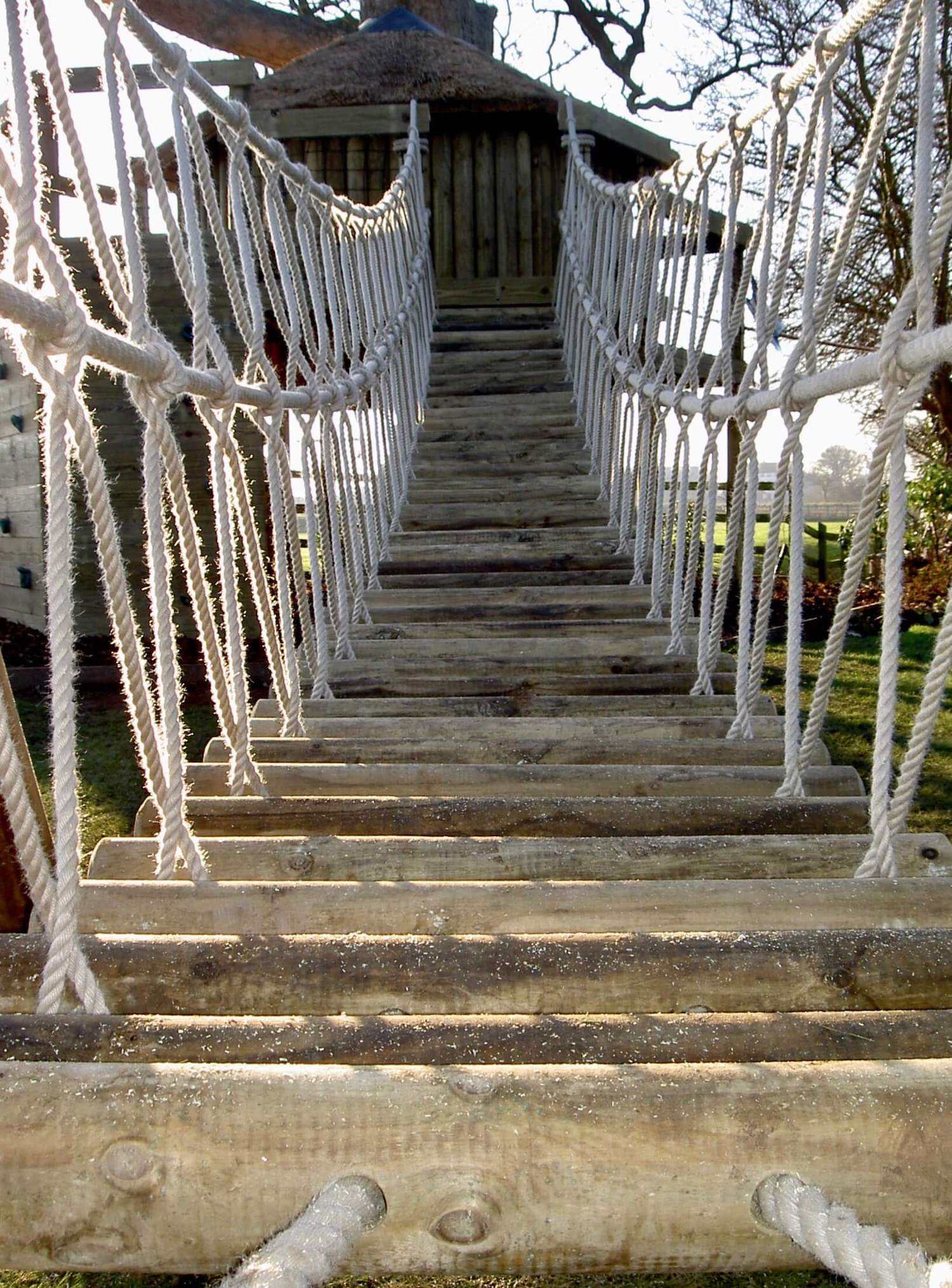 """...log entrance to treehouse"""