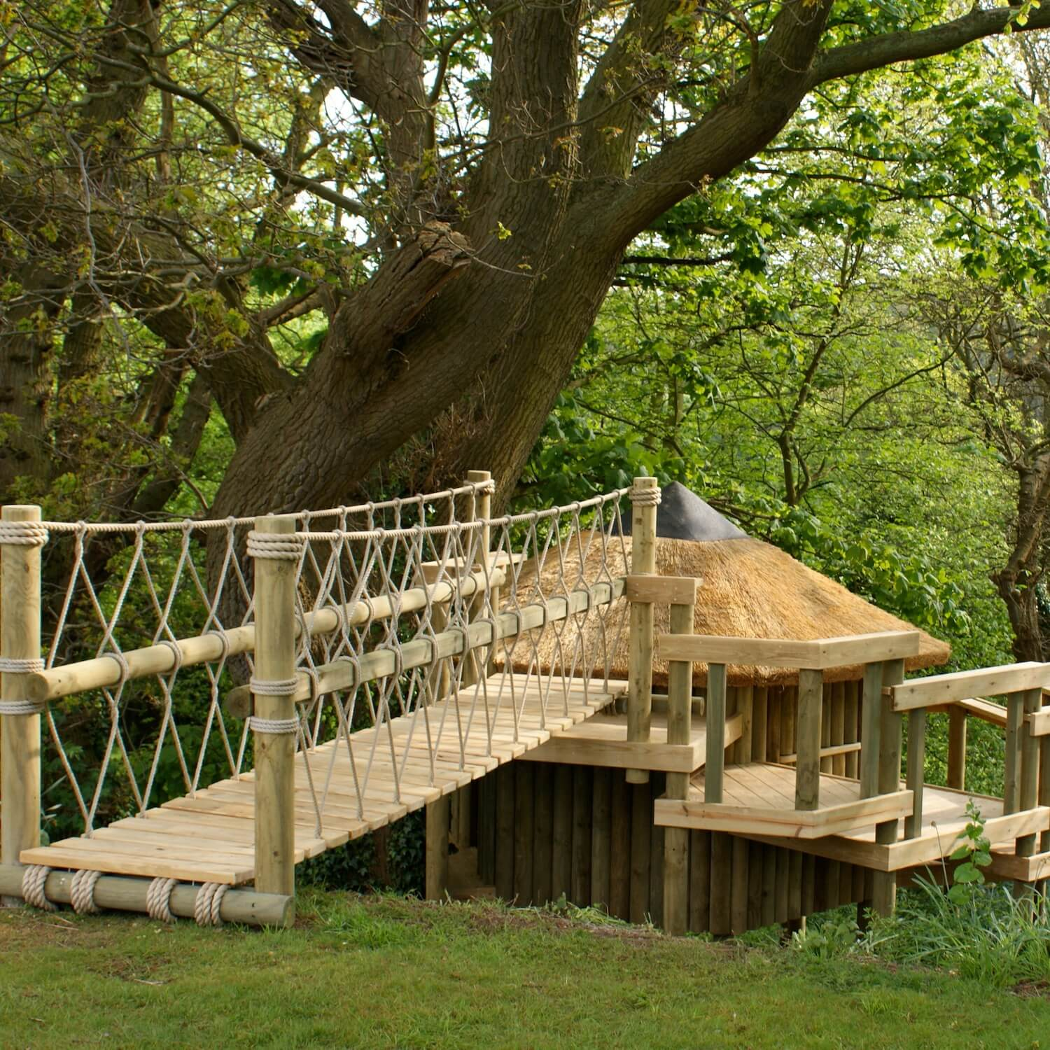 """""""...seamless entrance to treehouse over a rope bridge"""""""