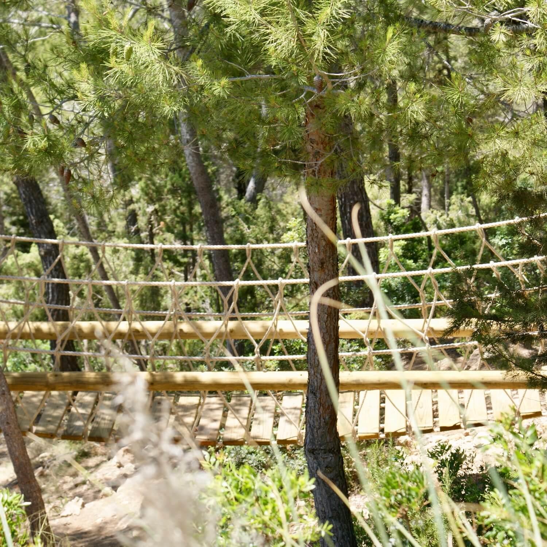 """""""...long woodland rope bridge"""""""