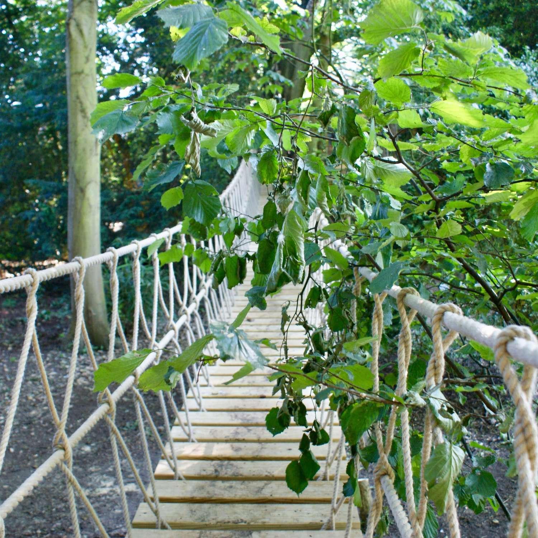 """...rope bridge in the trees"""