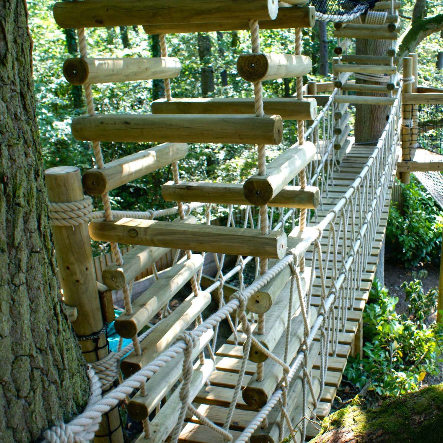 """""""...rope bridge and 4-sided rope ladder"""""""