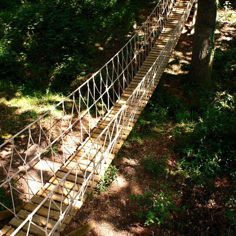 """...woodland rope bridge bathed in sunlight"""