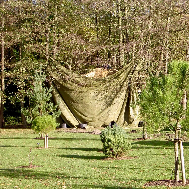 santa-claus-favourite-treehouse-wrapped.jpeg