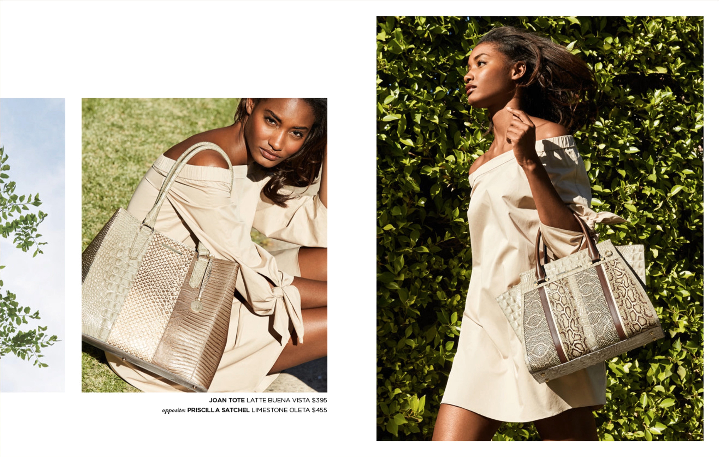 Brahmin_Summer Catalog_Video_16.jpg