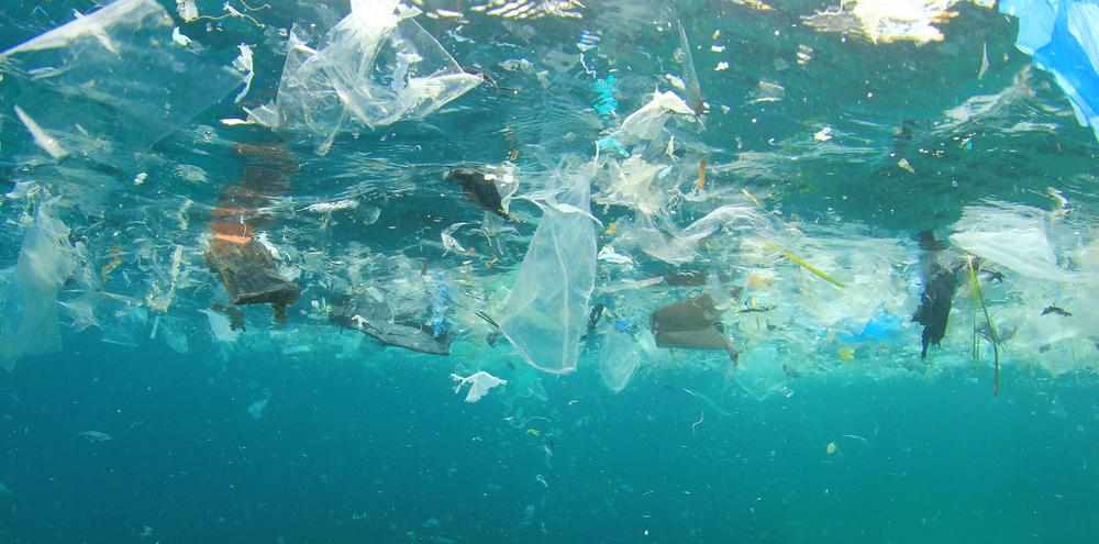 Plastic-Ocean.jpg