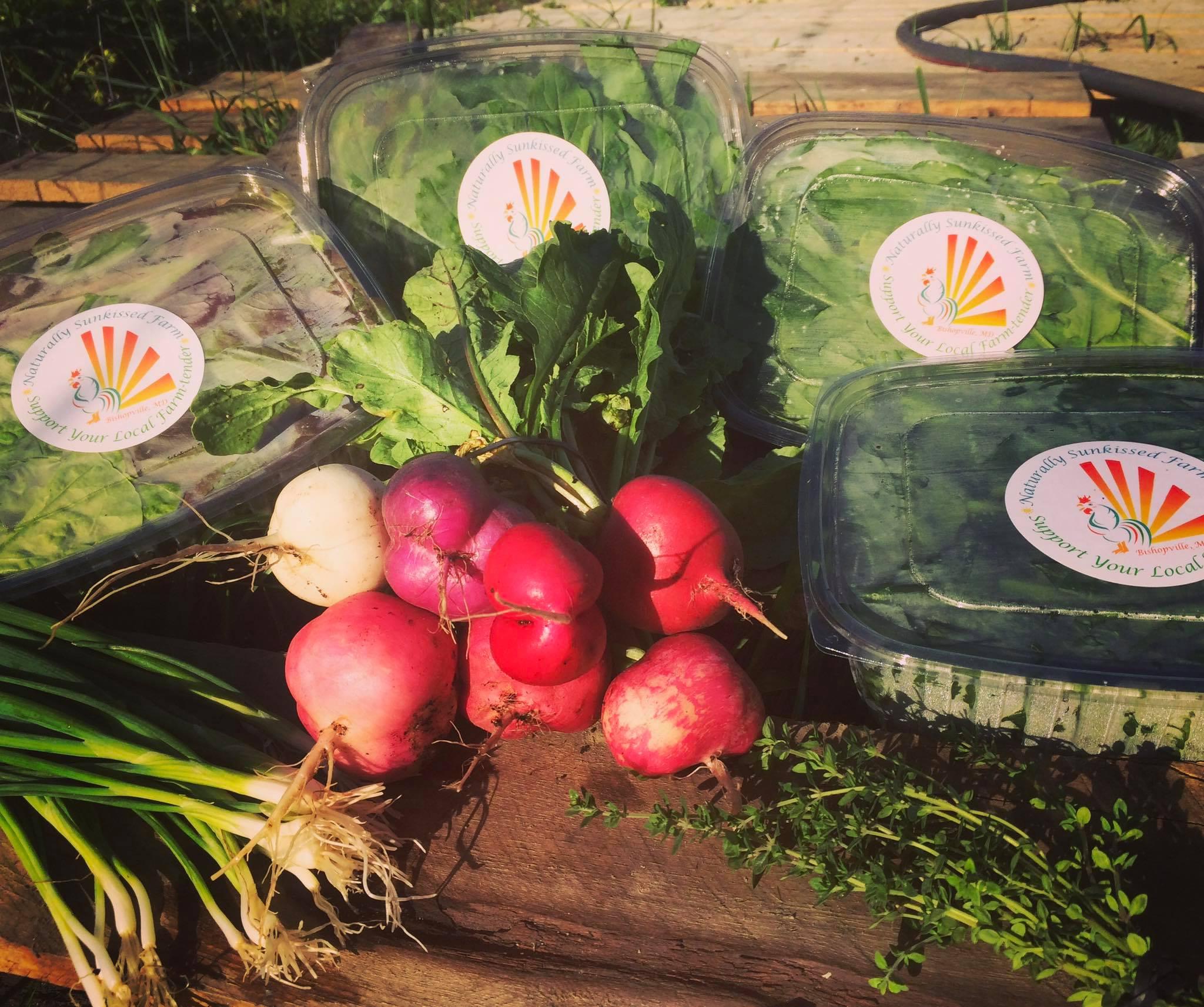 Farm Box 2.jpg