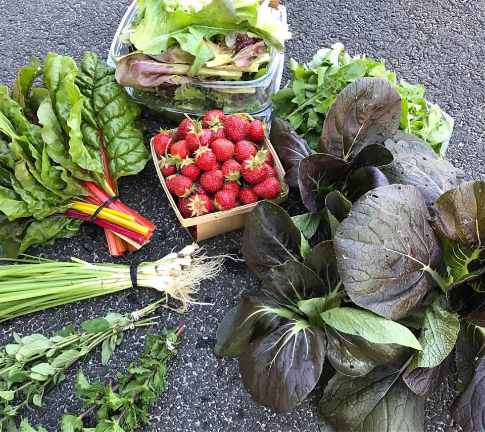 Farm Box.jpg
