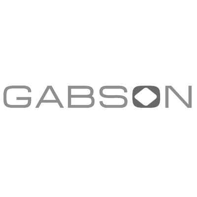 gabson.png